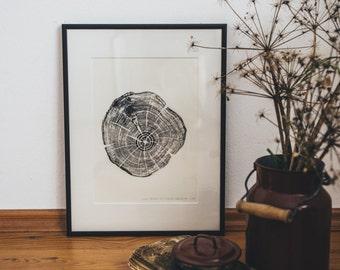 Woodprint Robinie #1 / Robinia #1