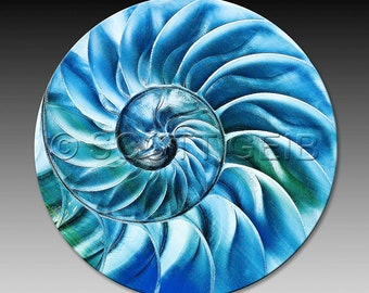 Blue nautilus - a very absorbent Coaster.  Make a great little gift for anyone who loves the beach!