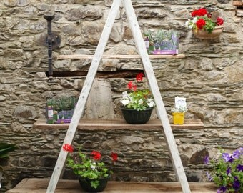 Vintage French Fruit pickers/ Decorater Ladders