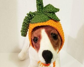 Pet Hat Pumpkin Pup- Made to order