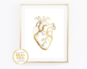 Human Heart, Real Foil, Anatomy, Medical decor, Med student, doctor gifts, doctor gifts, Gold foil, Silver foil, Home Decor Print, Wall Art