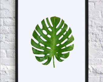 Monstera Digital Print // Wall Decor // Leaf