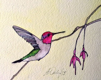 Art Card; Anna's Hummingbird