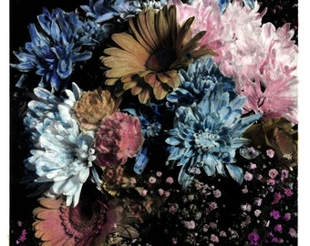 hand coloured floral photographic print #2