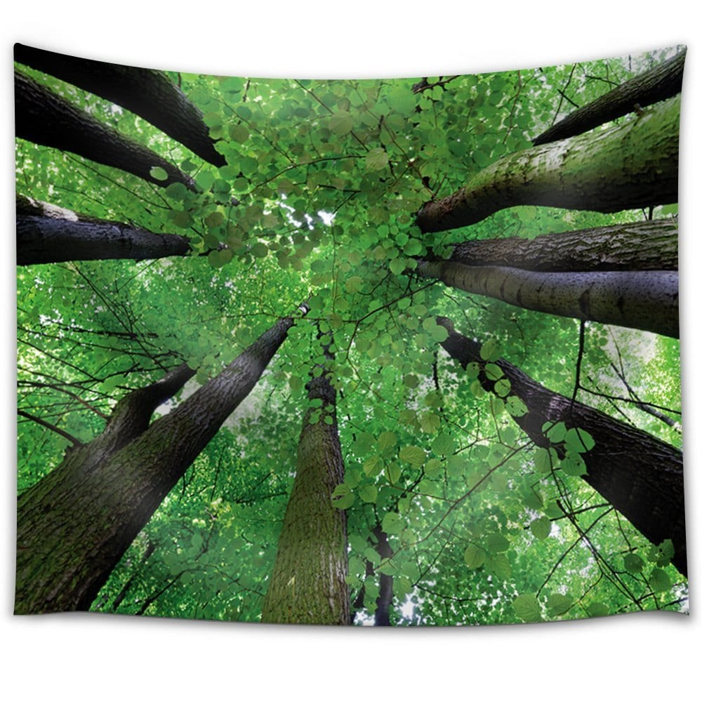 Forest Lake Fabric Home: Looking Up At The Trees At A Forest Fabric Tapestry Home