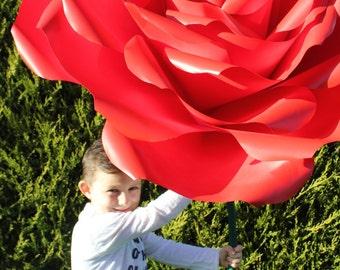Paper flowers (roses)