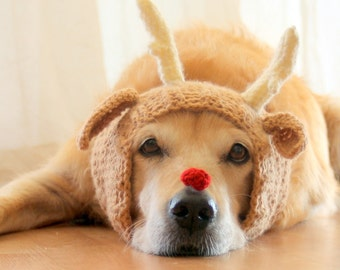 Reindeer Dog Costume, Reindeer Hat for Dogs, Dog Antlers, Christmas Dog Costume, Deer Hat for Dogs, Christmas Photo Prop for Large Dogs