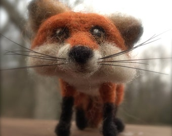 This little fox is up to something; he's either looking for a friend or a snack!