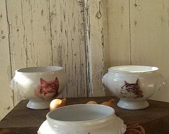 3 bowls lion head porcelain with decoration of cat/Lions head porcelain bowls/l onion soup bowls