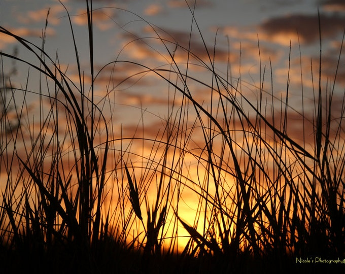 Prairie Grass Sunset photography Photo Print Gift for mom birthday gift for women Country Decor South Dakota Photography by Nicole Heitzman
