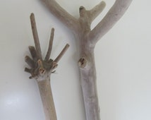 Sweet Driftwood Couple - Unique Driftwood Pieces For Macrame Wall Hanging - Two Unusual Drift Wood Branches Vase Filler