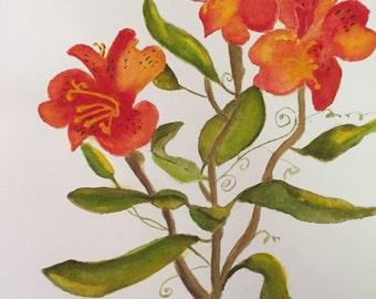 "Watercolor painting Alstroemeria, Peruvian Lily ""Coexist"""