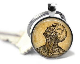 Vintage anatomy keychain Skull key fob Medical key ring