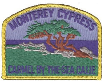 Monterey Cypress Patch - Carmel California