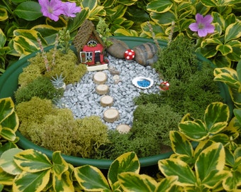Fairy Miniature Garden Kit,Fairy Garden, Fairy Miniatures,  Ideal for Young and Old, Free UK Postage