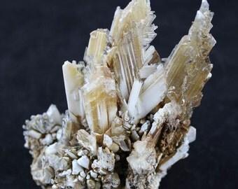 Selenite Crystal Blade Cluster-  Mineral Specimen SELA14