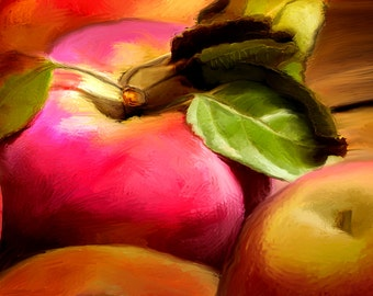Fall Apples, Giclee, Print, Photograph, orchard, Kitchen art, Fruit Print, digital painting, wall art,