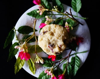 Cranberry Cookies, Oatmeal Cookies, Oatmeal Cranberry Cookies, White Chip Cookies