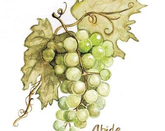 Green Grapes on a Vine/ Watercolor print/ Nursery Art/ Nature Art
