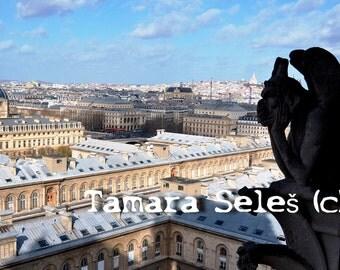 Le Stryge de Notre Dame