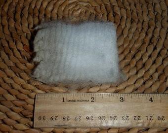Alpaca fibre crias white