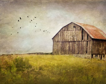 Old Barn Photograph, Fine Art Print, Rural Landscape Photography, green gold, country, rural art print, farm photo, Fine Art Photography,