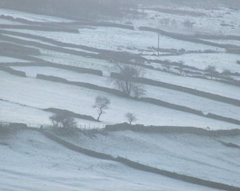 Terraced Fields Yorkshire Dales, Natural Photography, Country Photography