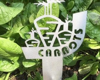 Carrot Garden Spike