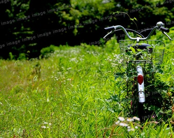 Instant download - Bicycle was left in the grass , a summer day