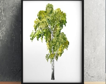 Floral print Birch tree art Birch poster Watercolor print ACW826