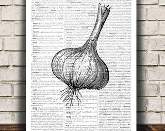 Rustic kitchen decor Food poster Vegetable print Garlic art Kitchen print RTA554