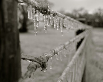 Rustic Winter Country Fence Black and White Photography