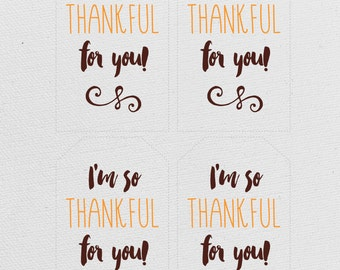 Thanksgiving Printable Tags- I'm so Thankful for you!