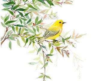 Bird art print. Bird artwork. Watercolor bird print. Yellow Bird. Watercolor Giclée print. Bird print. Bird painting. Gift under 30 dollars