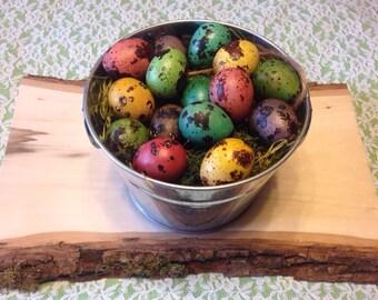 Quail Eggs - Dusky Bold Mix - 15 Dyed Eggshells