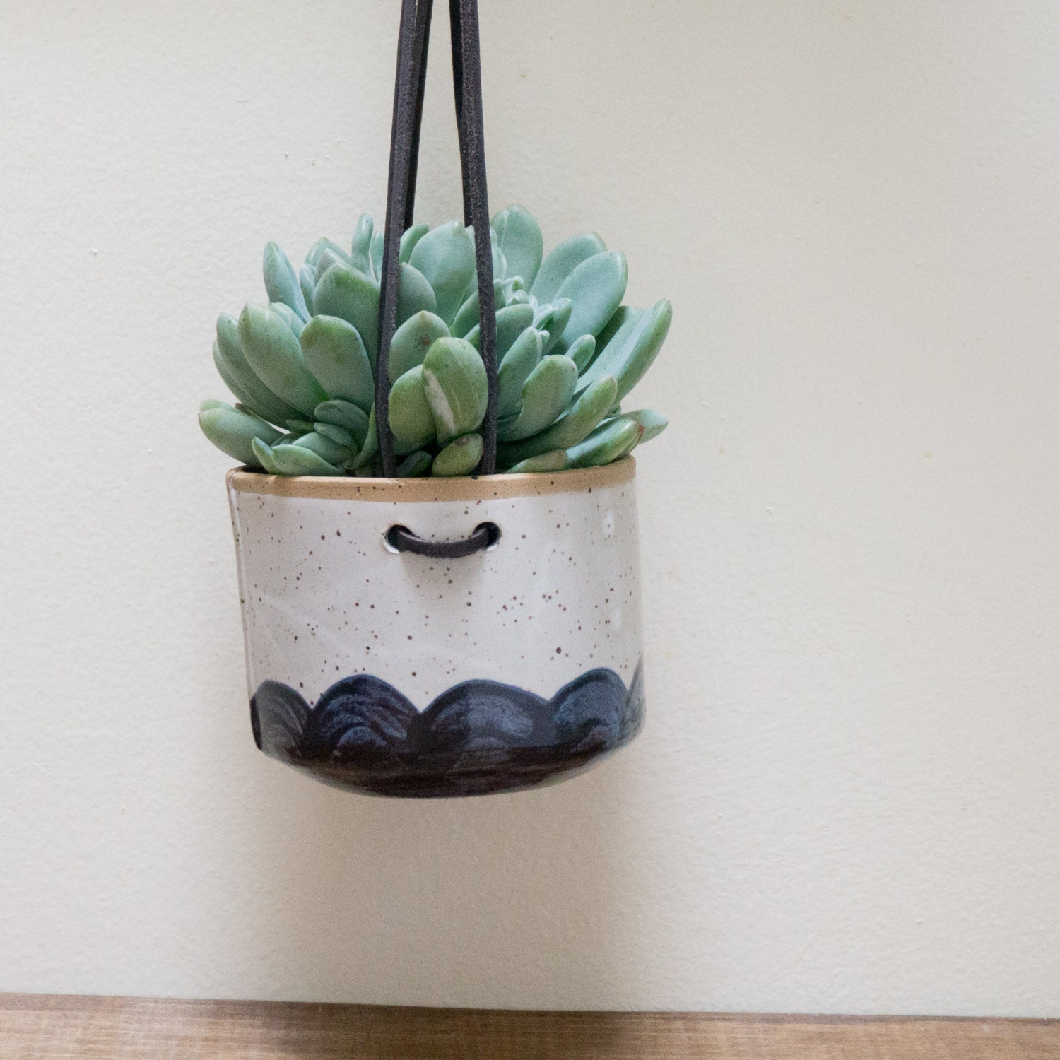 Sale hanging wall planter for succulents and airplants blue Planters for succulents