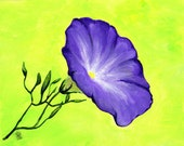 Morning Glory, purple flower, floral painting, gift for her, gift for mom,