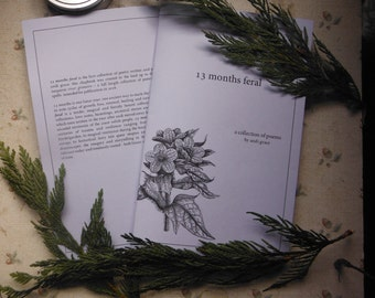 13 Months Feral: Poetry Chapbook