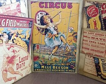 Mini Album - Vintage Circus