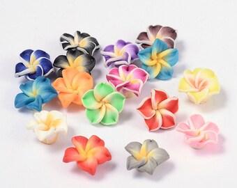 50 Polymer Fimo Clay Plumeria Flower Beads 12 x 8mm (B3L1)