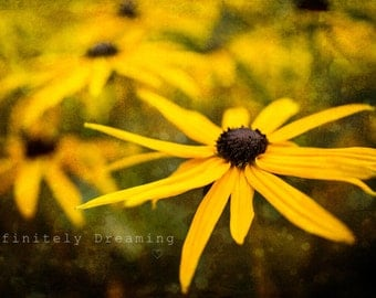 Colourful Flower Photography, Yellow Floral Print, Nature Inspired Photography, Floral Art Photography