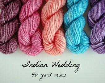 40 Yard Mini Skein, set of 5 in Indian Wedding