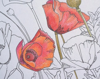 Poppy Flower Coloring Page, Spring Flowers Coloring Page, Oriental Poppies, Adult Coloring Page, Stress Relief Coloring, Instant Download