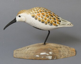 Dunlin Shorebird Woodcarving