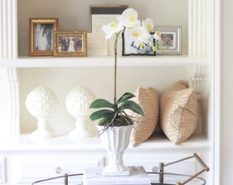 NEW Faux Phalaenopsis Orchid Arrangement in Ivory Ceramic Pot, White Orchid