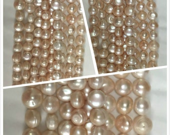 Pink Cultured Freshwater Pearl 12mm Bead Necklace.R-S-PEA-0430