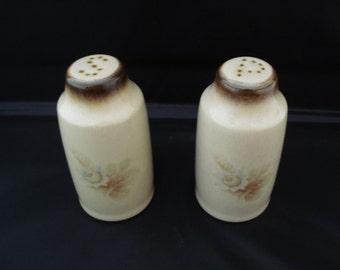 REDUCED Denby Salt & Pepper memories pattern