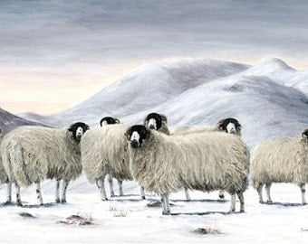 SUNSET OVER ROUGHFELLS - Limited edition Giclee print