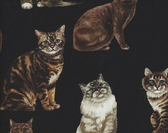 Cats on black Cotton Quilt Fabric Timeless Treasures 2863.