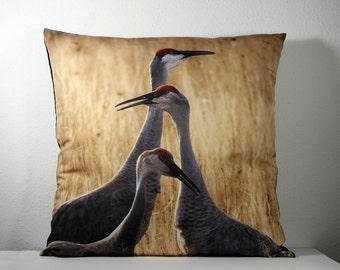 """16""""x 16"""" Decorative Pillow Cover with Bosque del Apache Crane Family Photo Print"""